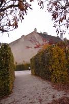 Vienna autumn